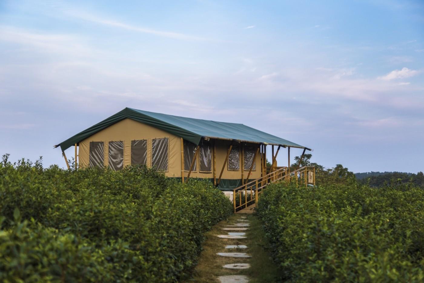 喜马拉雅野奢帐篷酒店—宝盛园夜色9