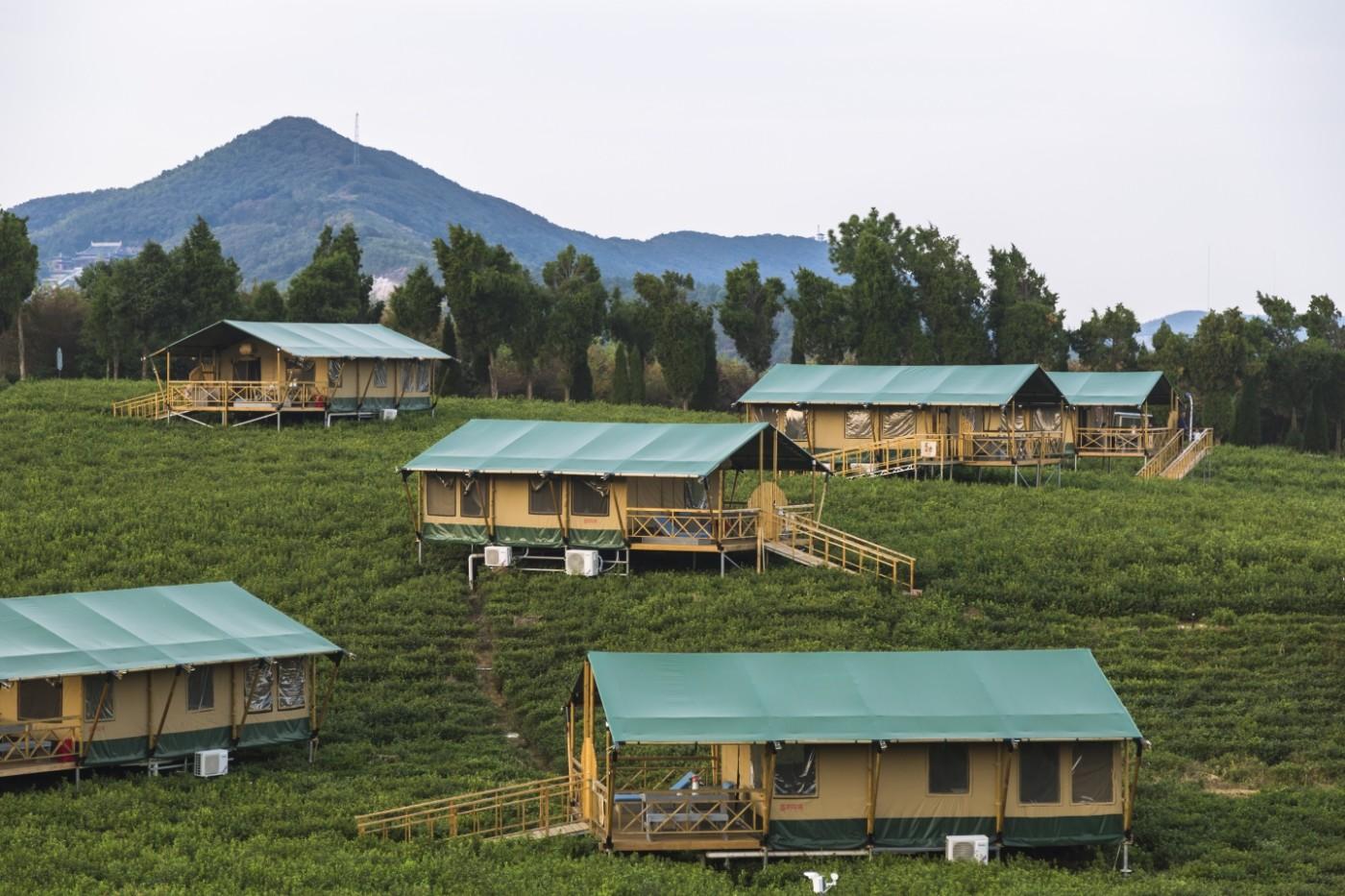 喜马拉雅野奢帐篷酒店—宝盛园夜色13
