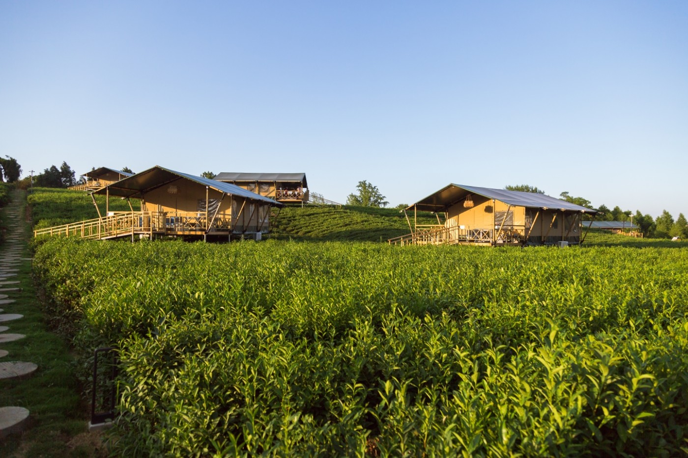 江苏常州茅山宝盛园坡地帐篷酒店16