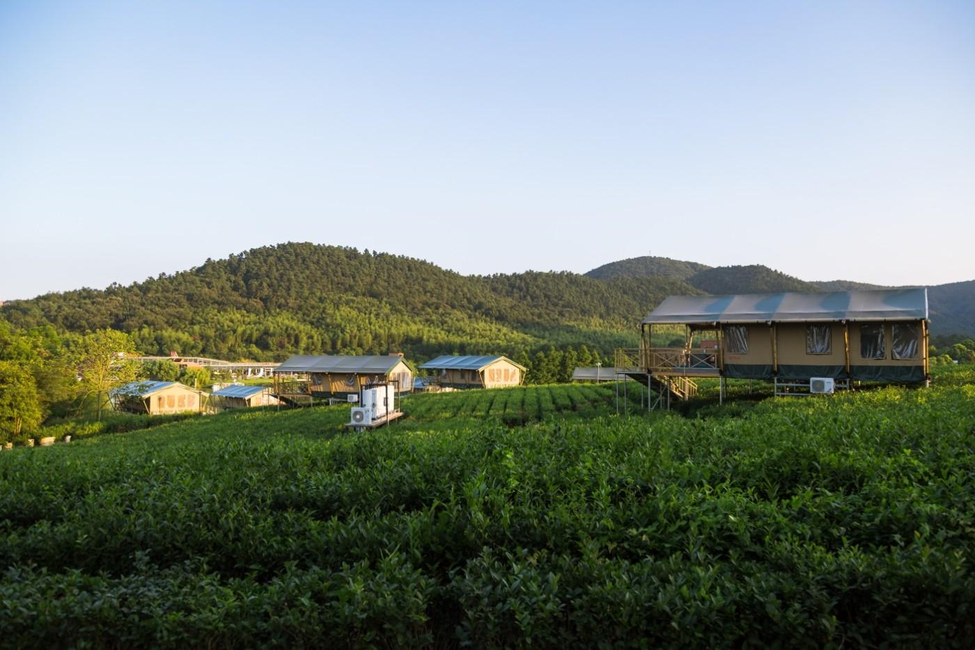 喜马拉雅野奢帐篷酒店—江苏常州茅山宝盛园茶园帐篷酒店10