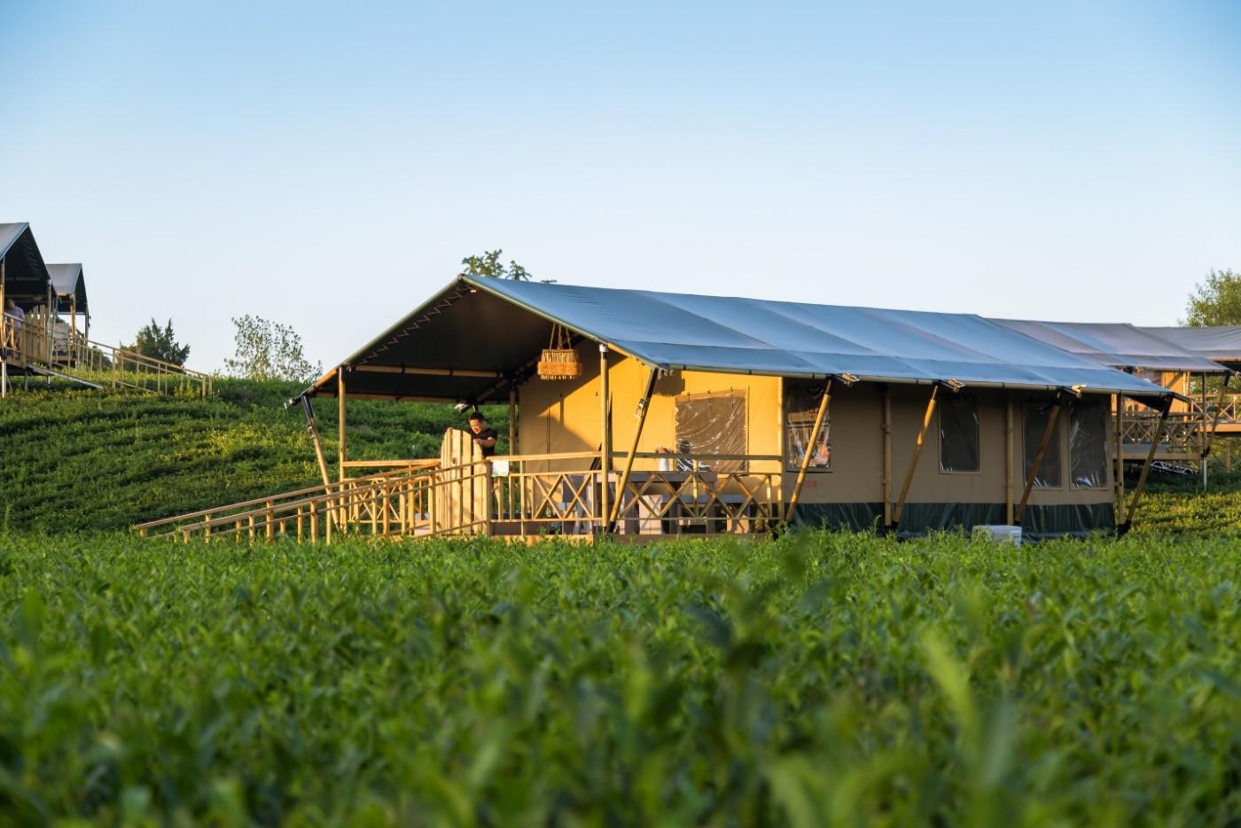 喜马拉雅野奢帐篷酒店—江苏常州茅山宝盛园茶园帐篷酒店15