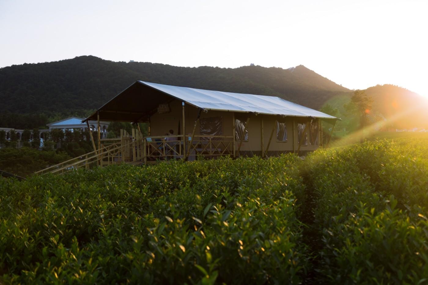 江苏常州茅山宝盛园坡地帐篷酒店22
