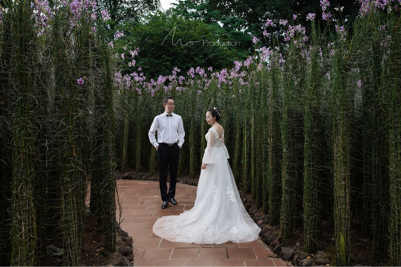 MoFoTo | 新加坡旅拍婚纱8
