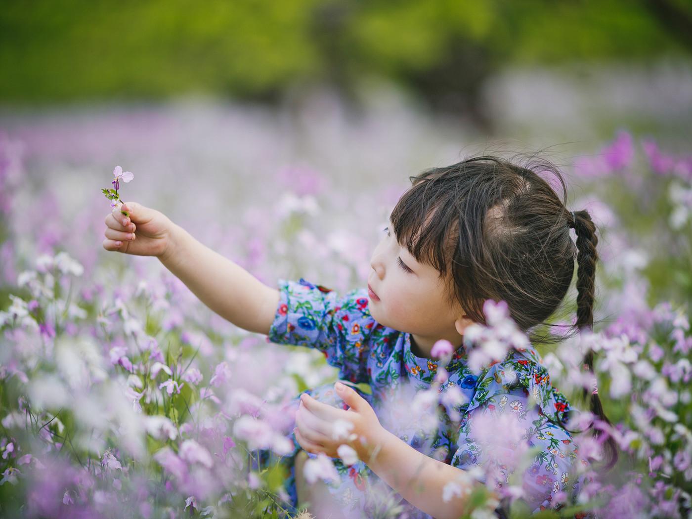 春天在哪里?1