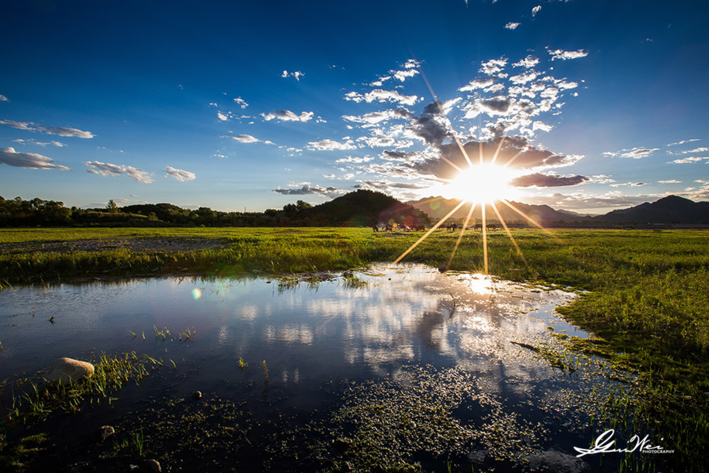 夏日的夕阳23