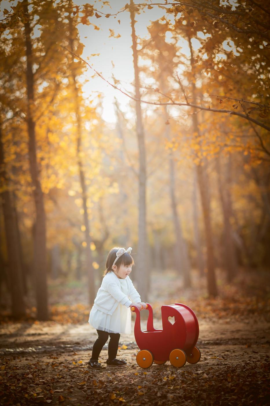北京的秋1