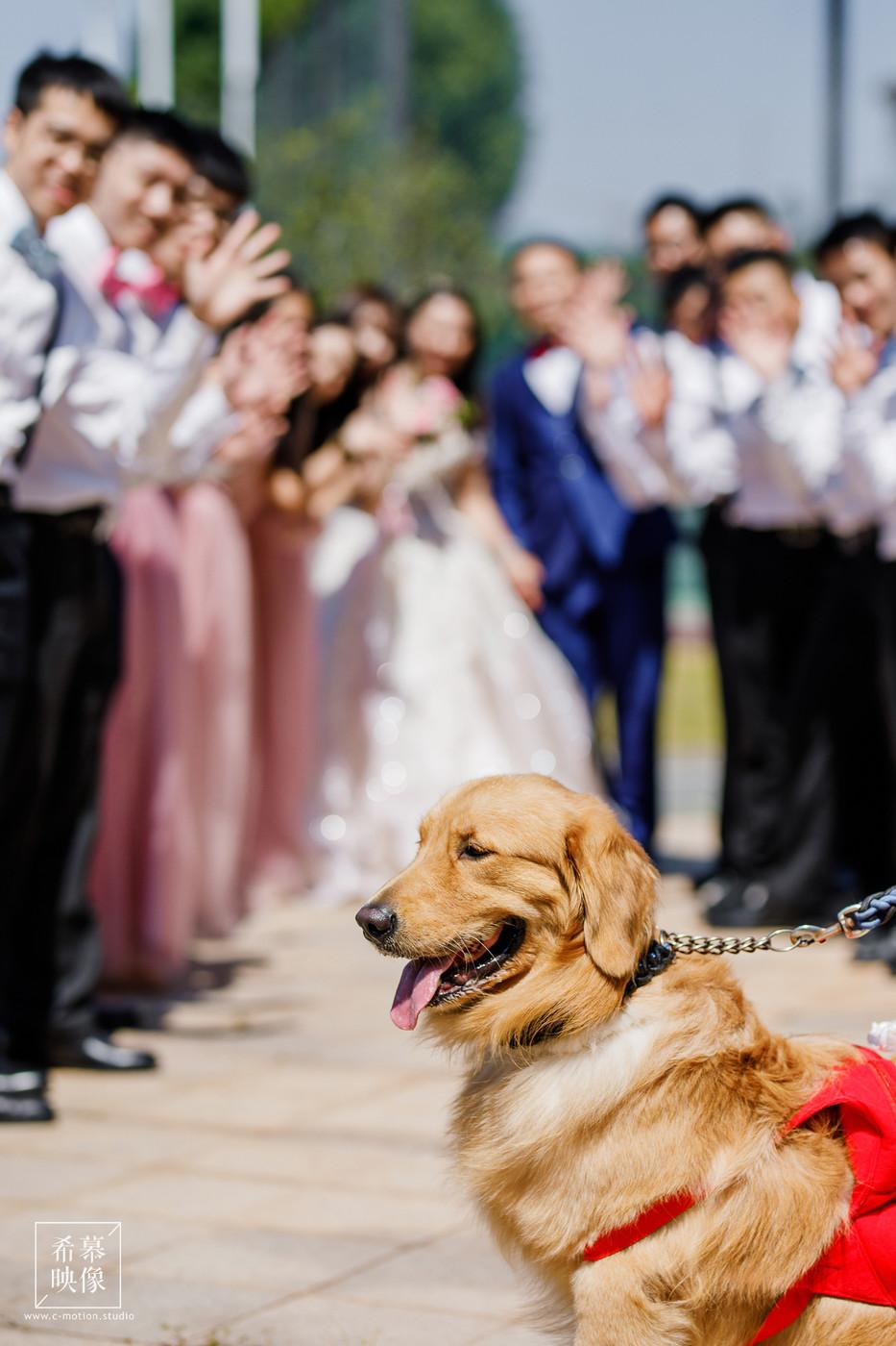 HY&Leo's Wedding day46