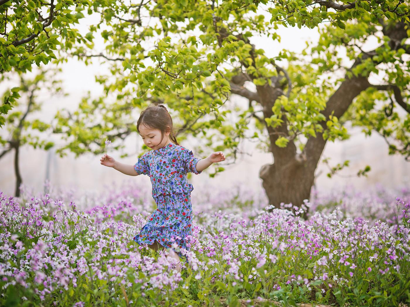 春天在哪里?3