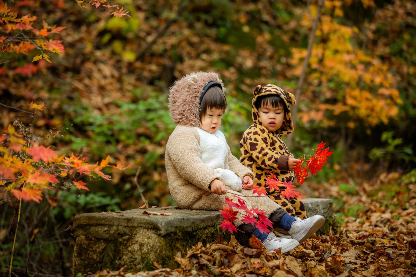 红叶林里的小可爱2