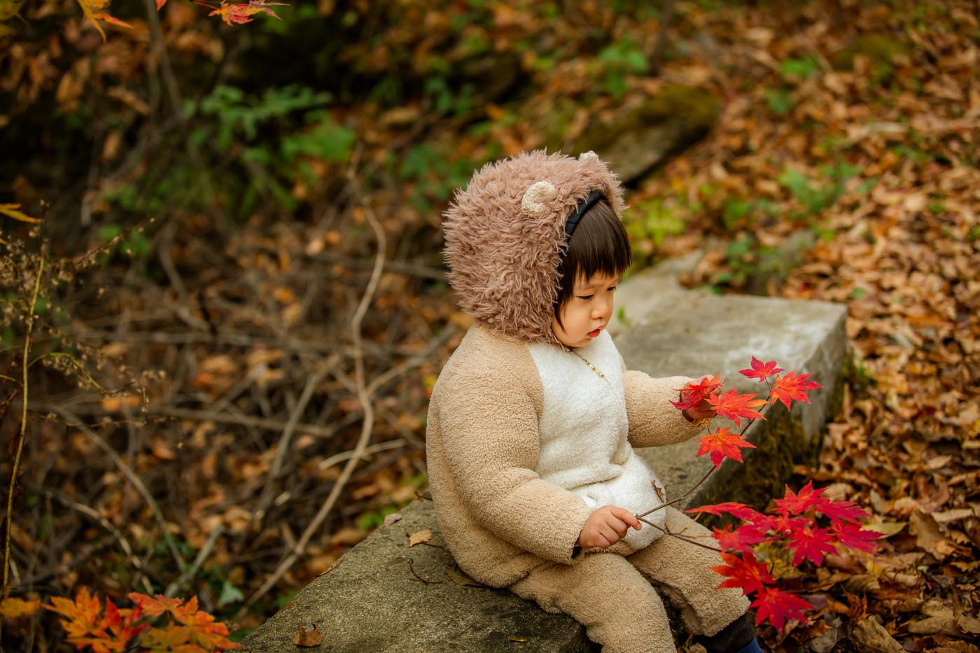红叶林里的小可爱3
