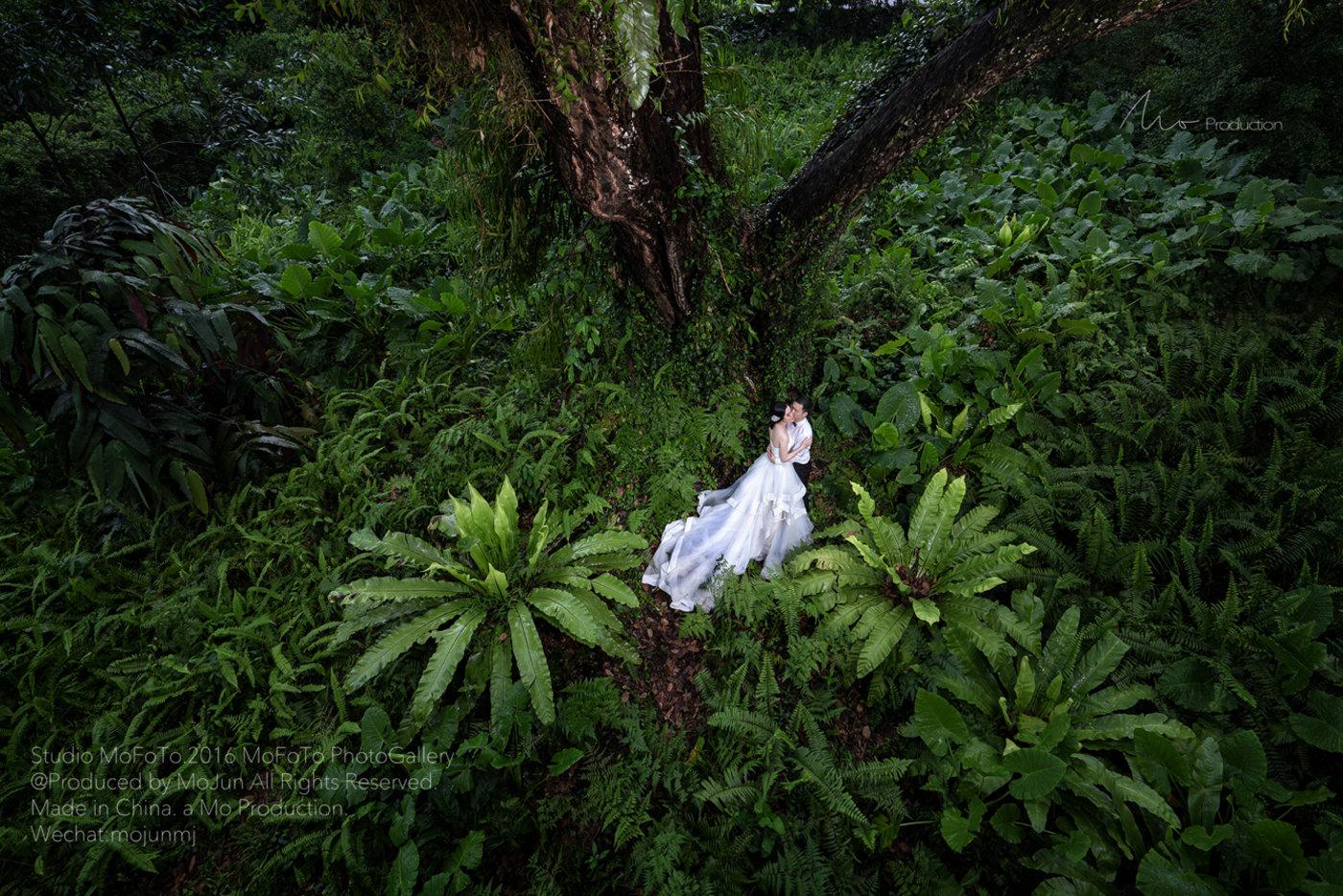 MoFoTo新加坡旅拍婚纱6