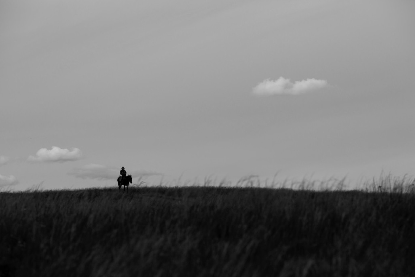 草原旅拍-那片山丘系列22