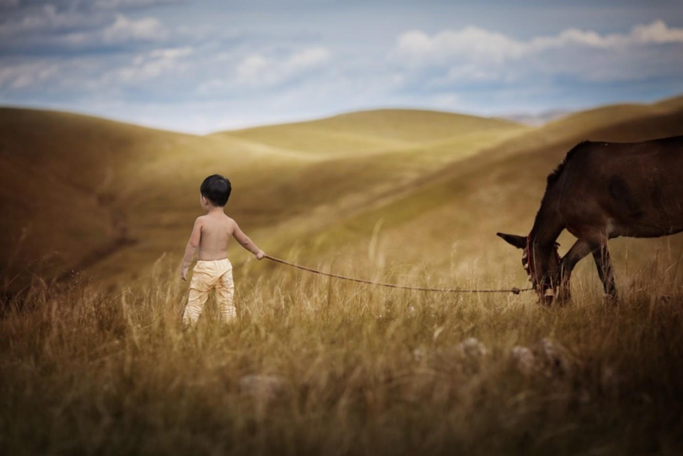 草原旅拍-那片山丘系列14