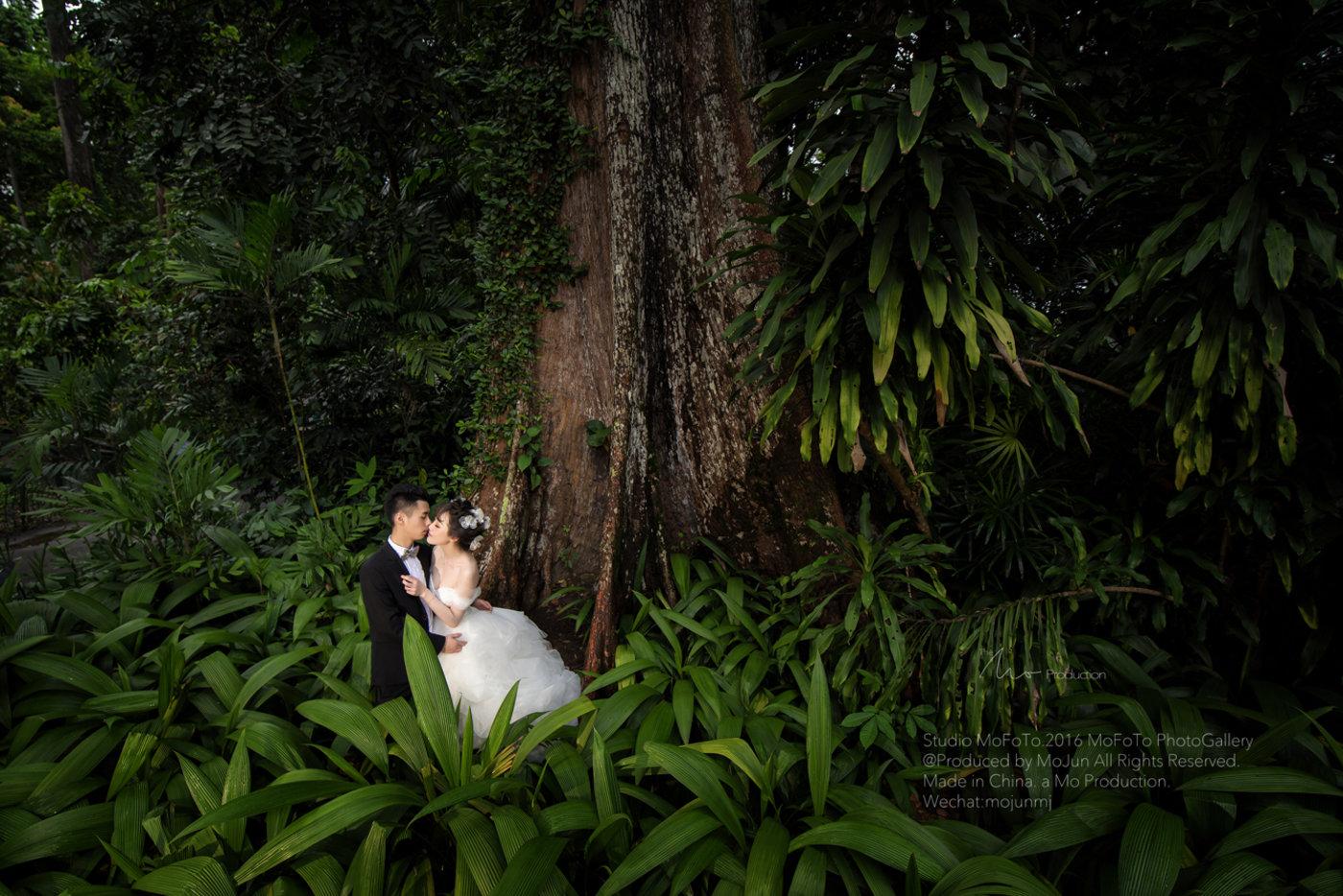 MoFoTo新加坡婚纱10