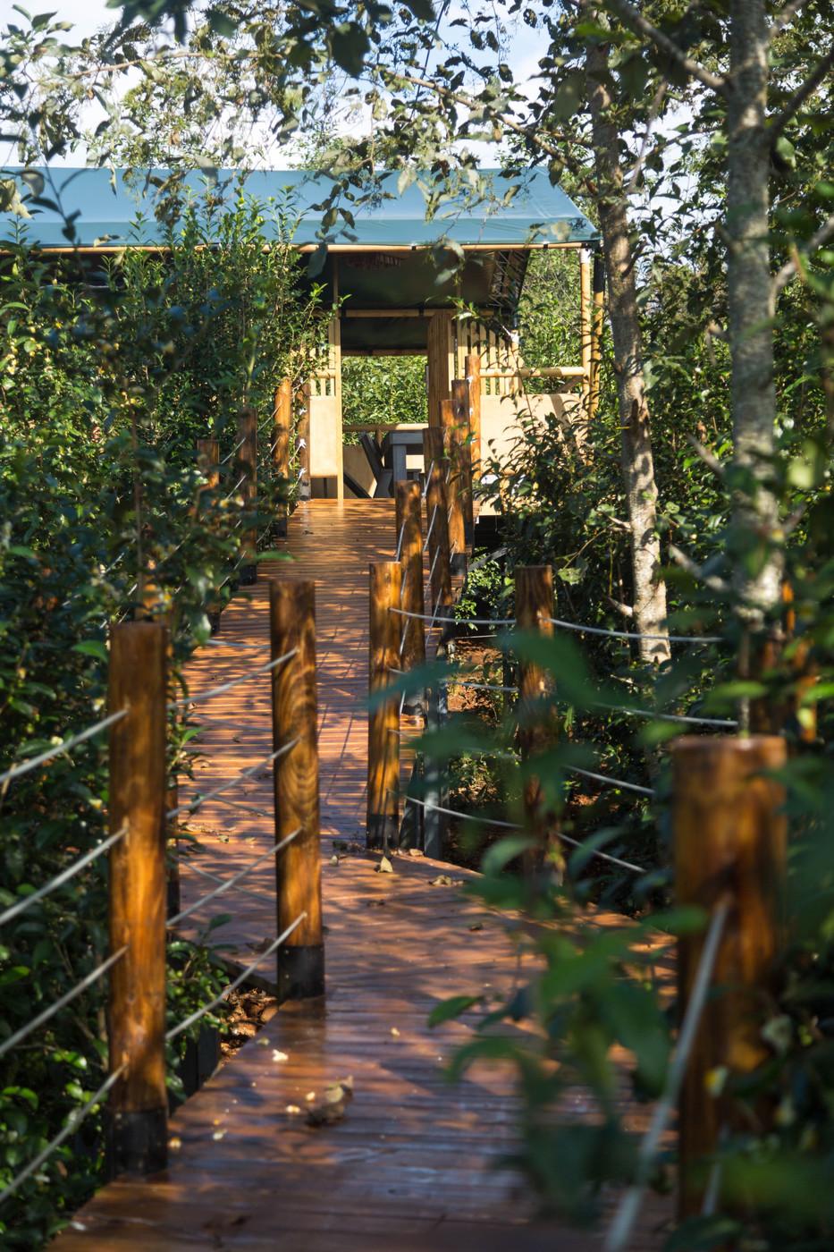 喜马拉雅野奢帐篷酒店—云南腾冲高黎贡山茶博园19