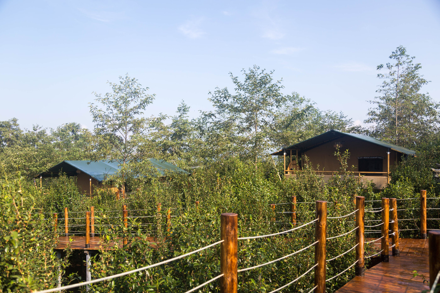 喜马拉雅野奢帐篷酒店—云南腾冲高黎贡山茶博园9