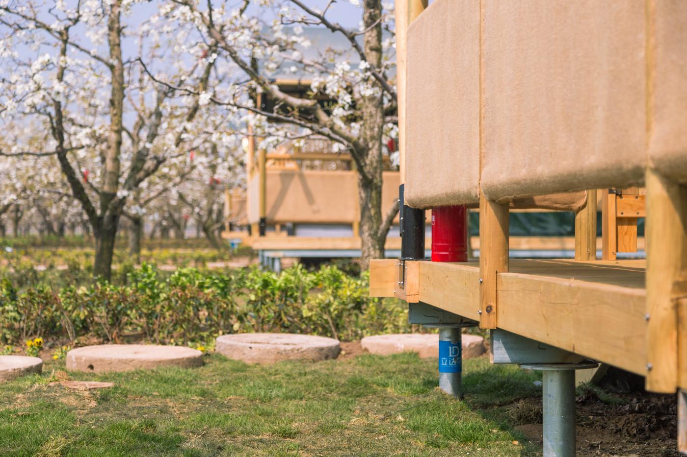 喜马拉雅野奢帐篷酒店—安徽砀山东篱蓬芦(梨园78平)18