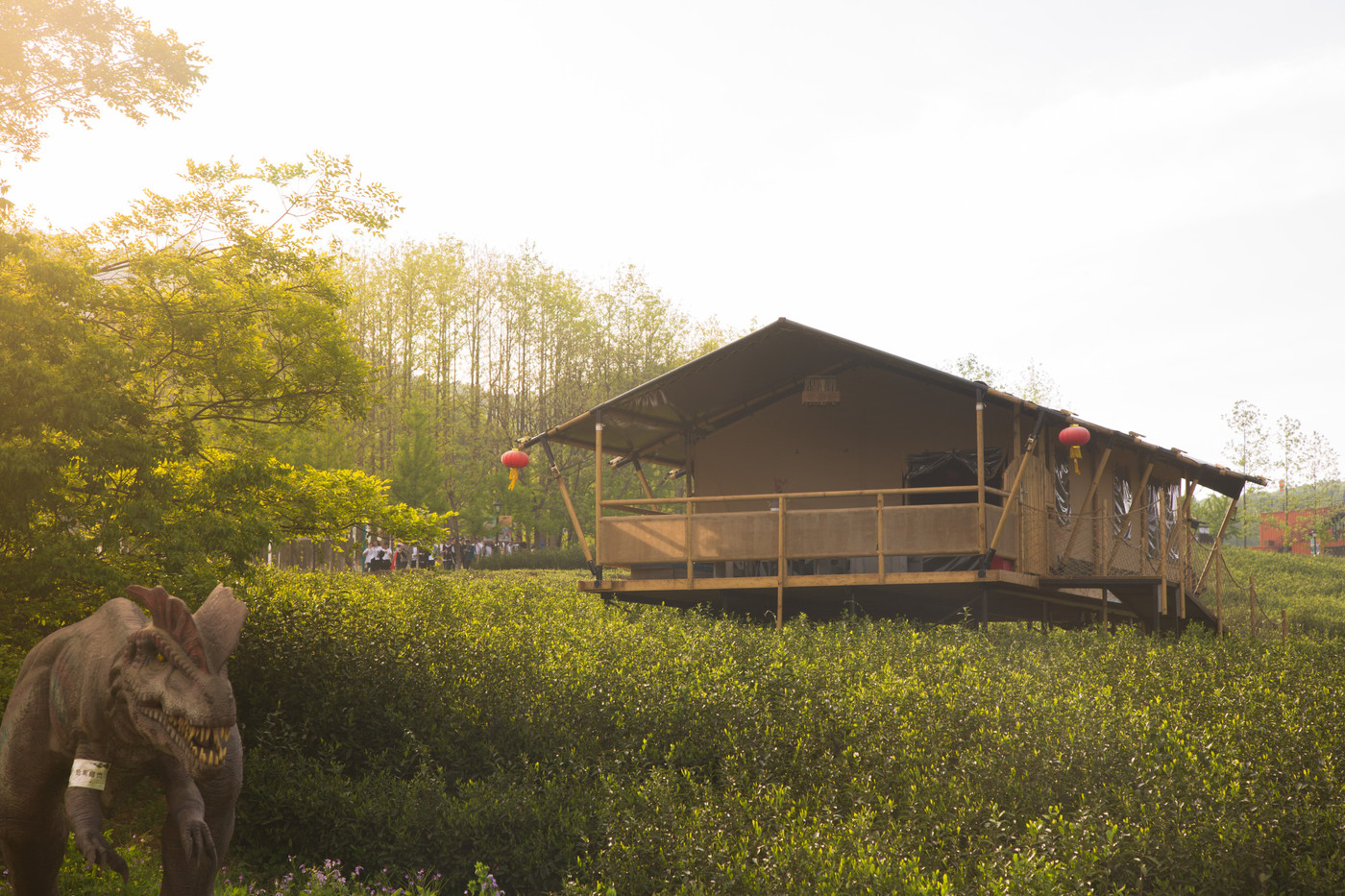 喜马拉雅野奢帐篷酒店—江苏常州茅山宝盛园2期茶田帐篷酒店11