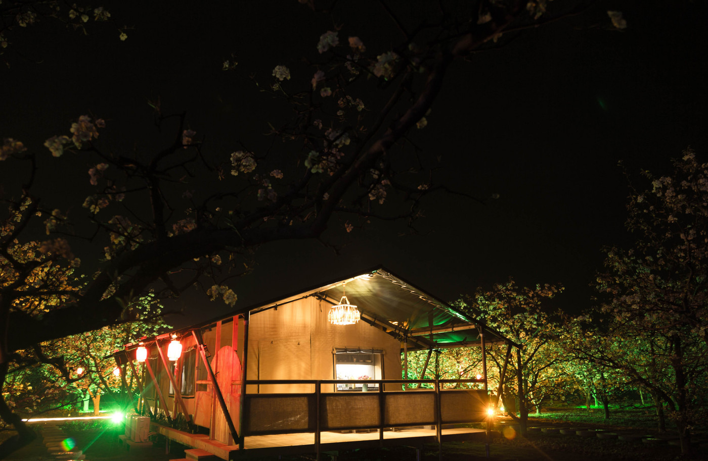 喜马拉雅野奢帐篷酒店—安徽砀山东篱蓬芦梨园帐篷酒店10