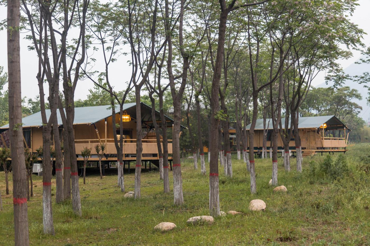 喜马拉雅野奢帐篷酒店—华山自驾游露营地(78平)1