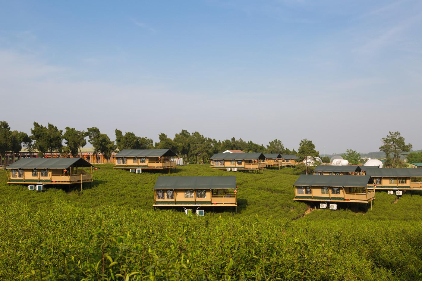 喜马拉雅野奢帐篷酒店—江苏常州茅山宝盛园2期茶田帐篷酒店7