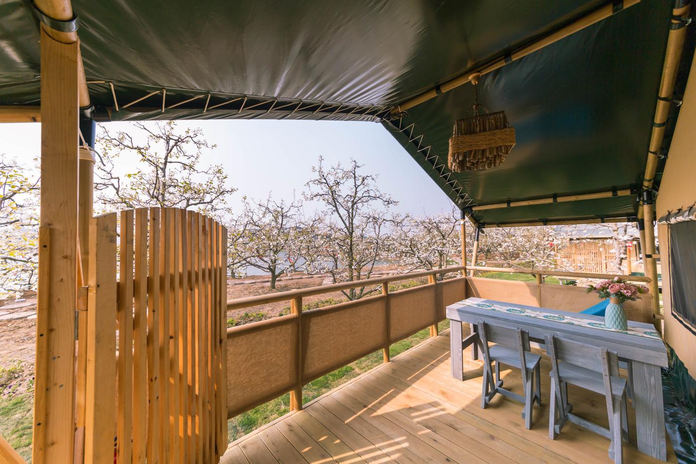 喜马拉雅野奢帐篷酒店—安徽砀山东篱蓬芦(梨园78平)3