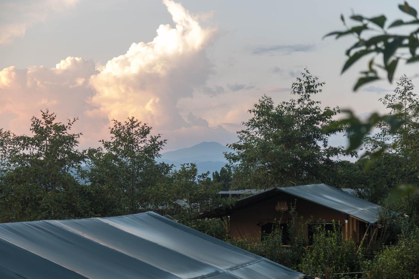 喜马拉雅野奢帐篷酒店—云南腾冲高黎贡山茶博园26