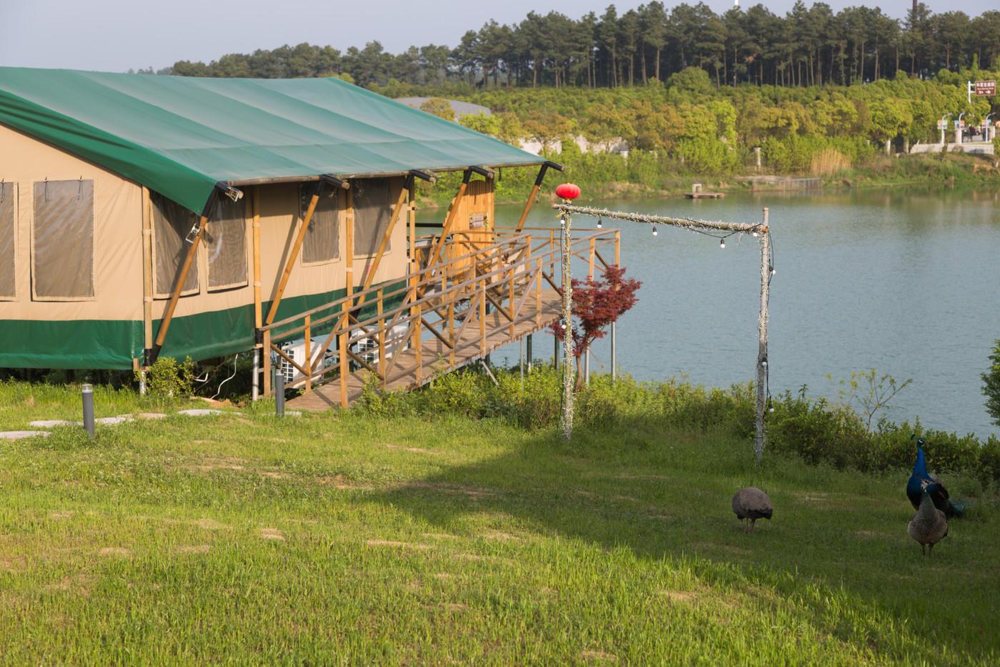 喜马拉雅野奢帐篷酒店—江苏常州茅山宝盛园2期茶田帐篷酒店16