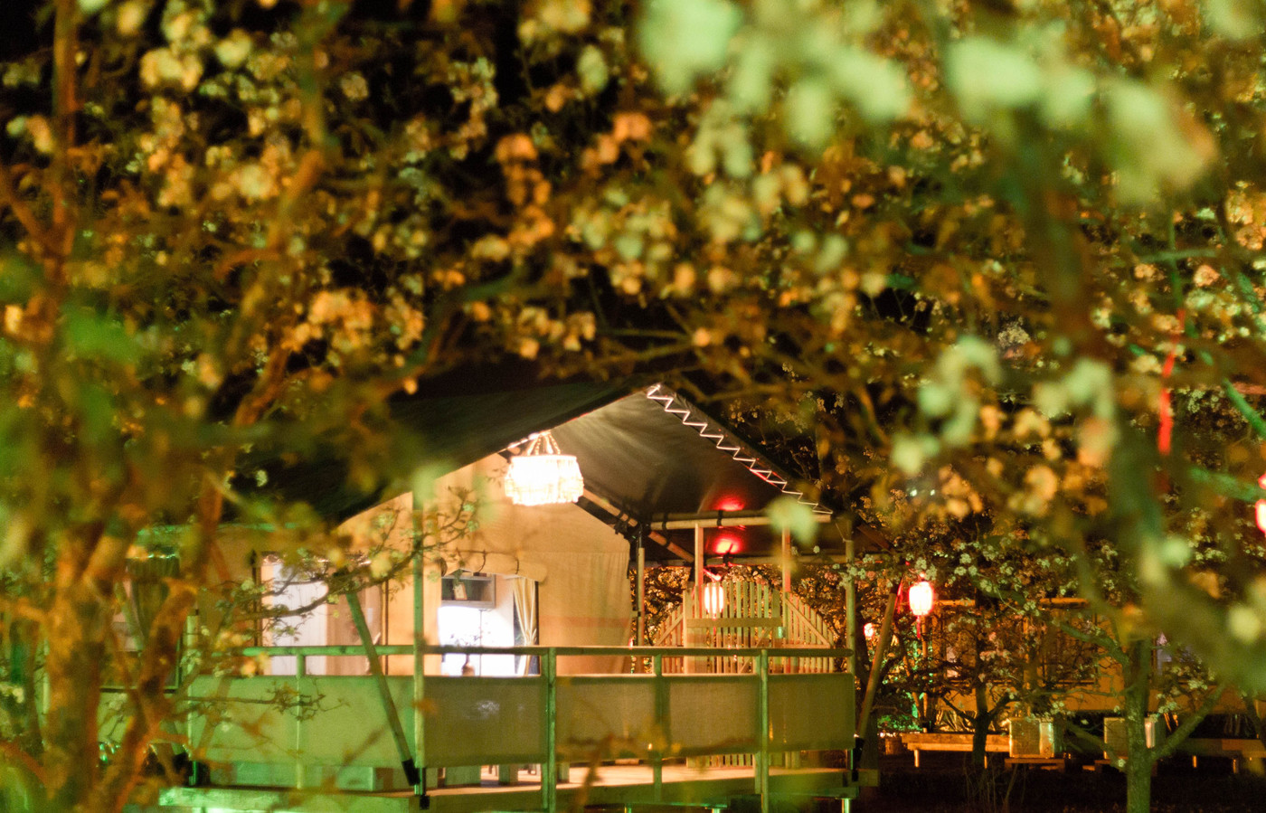 喜马拉雅野奢帐篷酒店—安徽砀山东篱蓬芦梨园帐篷酒店13