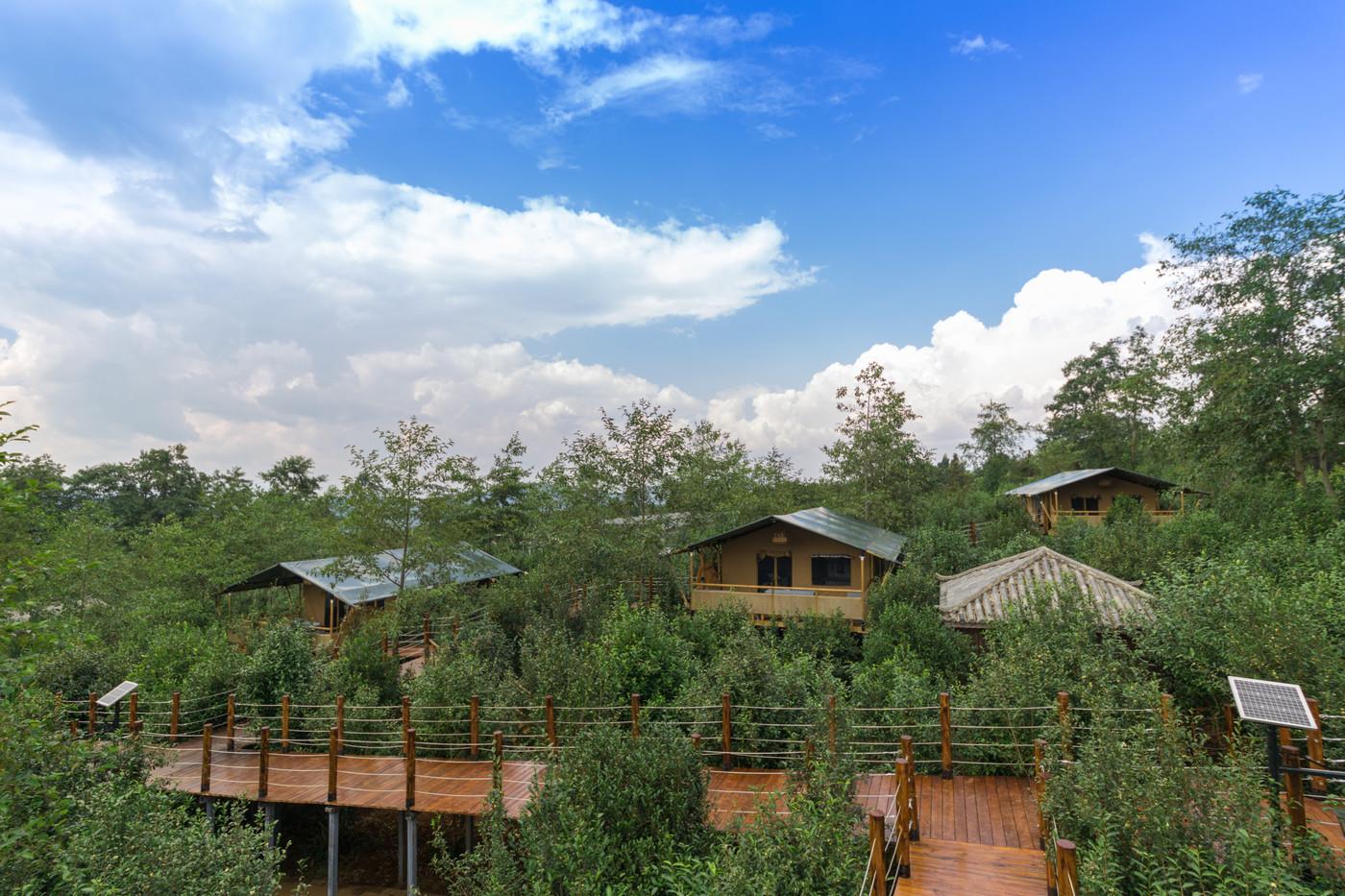 喜马拉雅野奢帐篷酒店—云南腾冲高黎贡山茶博园1