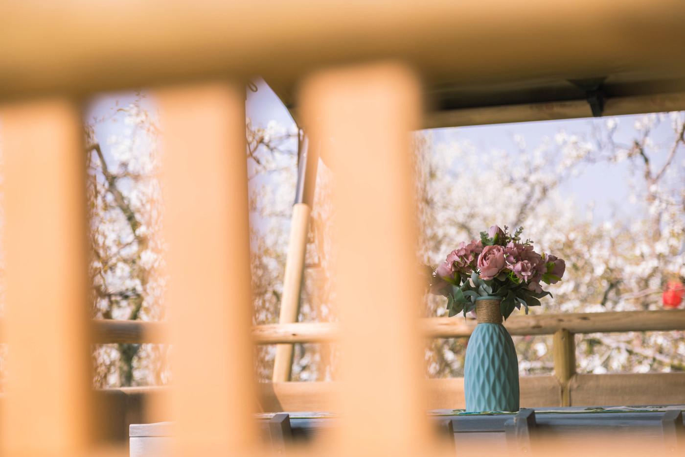 喜马拉雅野奢帐篷酒店—安徽砀山 东篱蓬芦(梨园41平)1