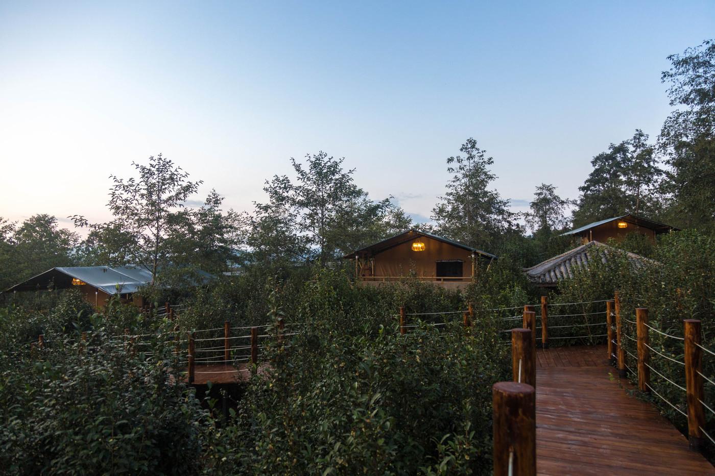喜马拉雅野奢帐篷酒店—云南腾冲高黎贡山茶博园24