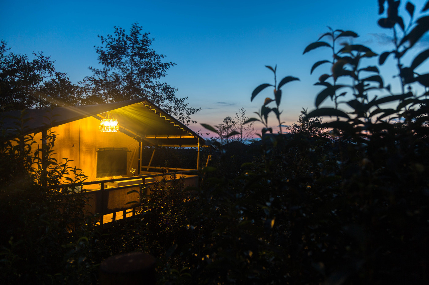 喜马拉雅野奢帐篷酒店—云南腾冲高黎贡山茶博园32