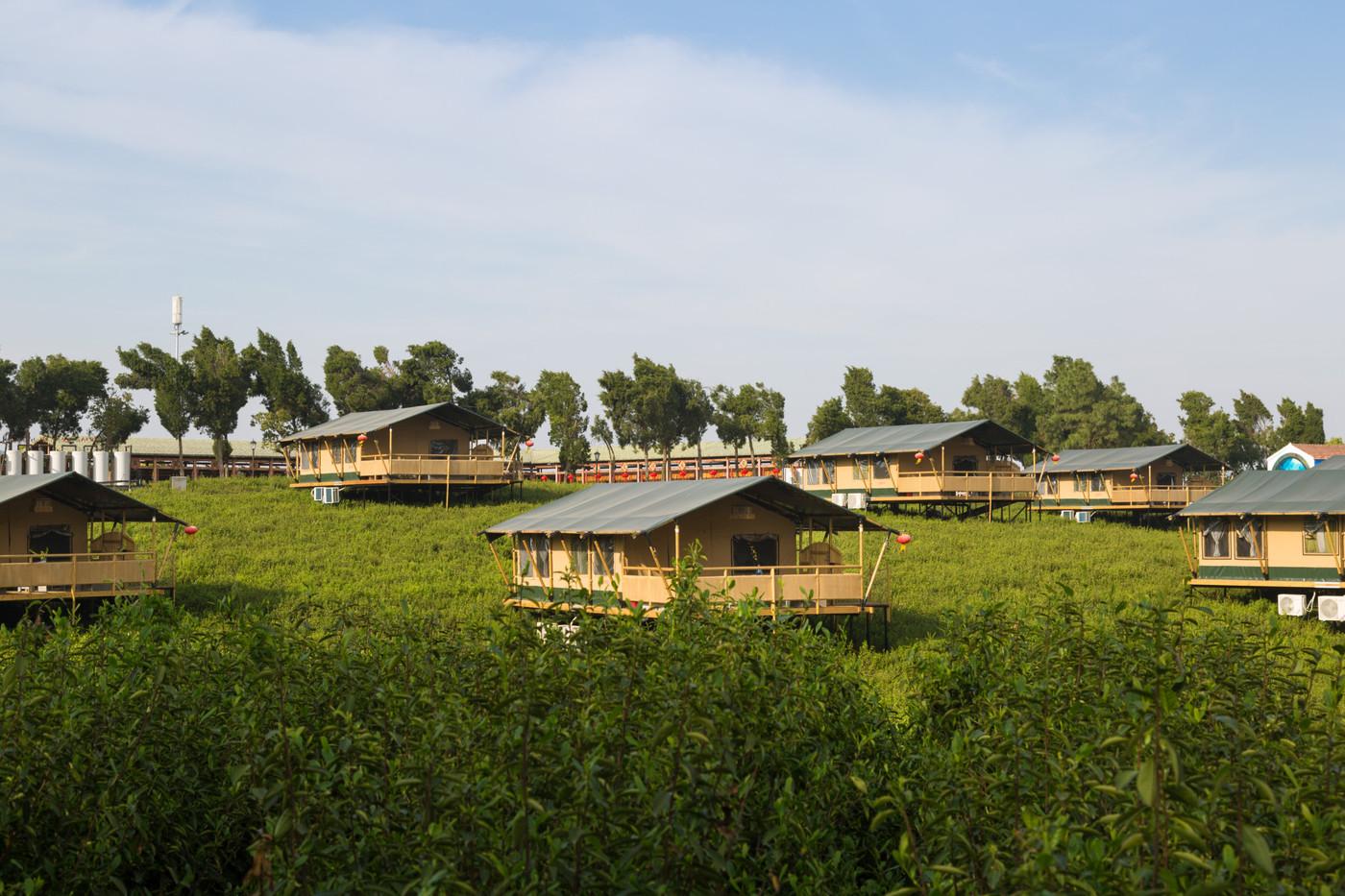 喜马拉雅野奢帐篷酒店—江苏常州茅山宝盛园2期茶田帐篷酒店5