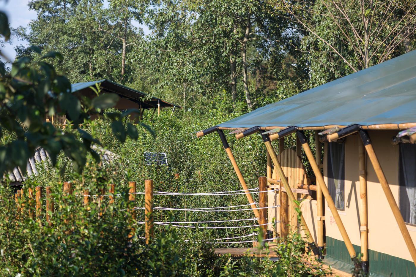 喜马拉雅野奢帐篷酒店—云南腾冲高黎贡山茶博园11