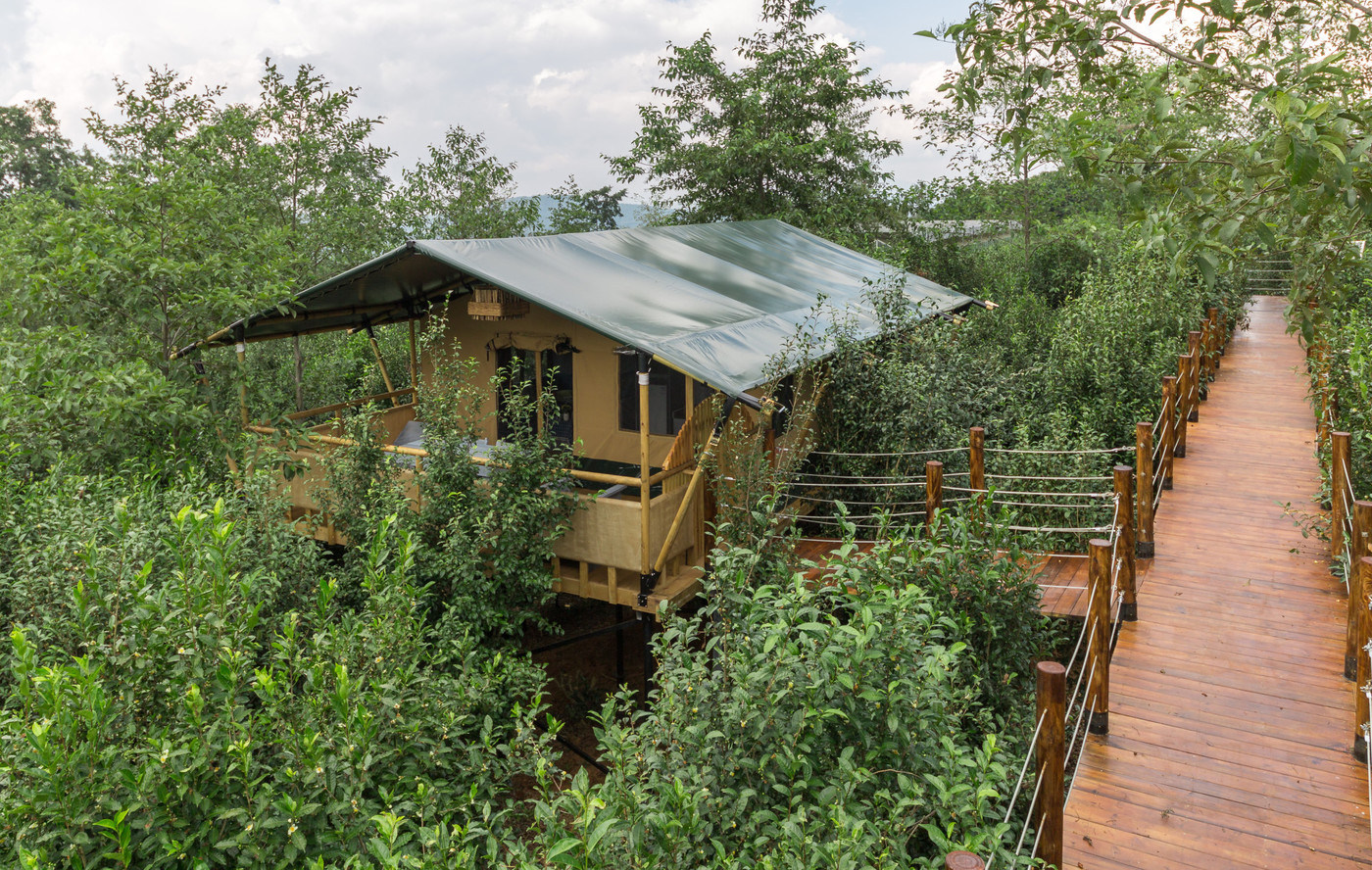 喜马拉雅野奢帐篷酒店—云南腾冲高黎贡山茶博园4