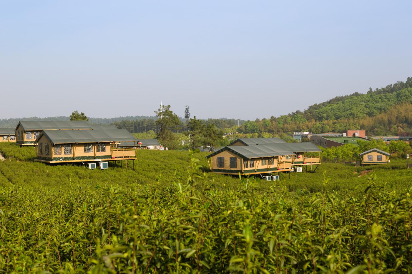 喜马拉雅野奢帐篷酒店—江苏常州茅山宝盛园2期茶田帐篷酒店6