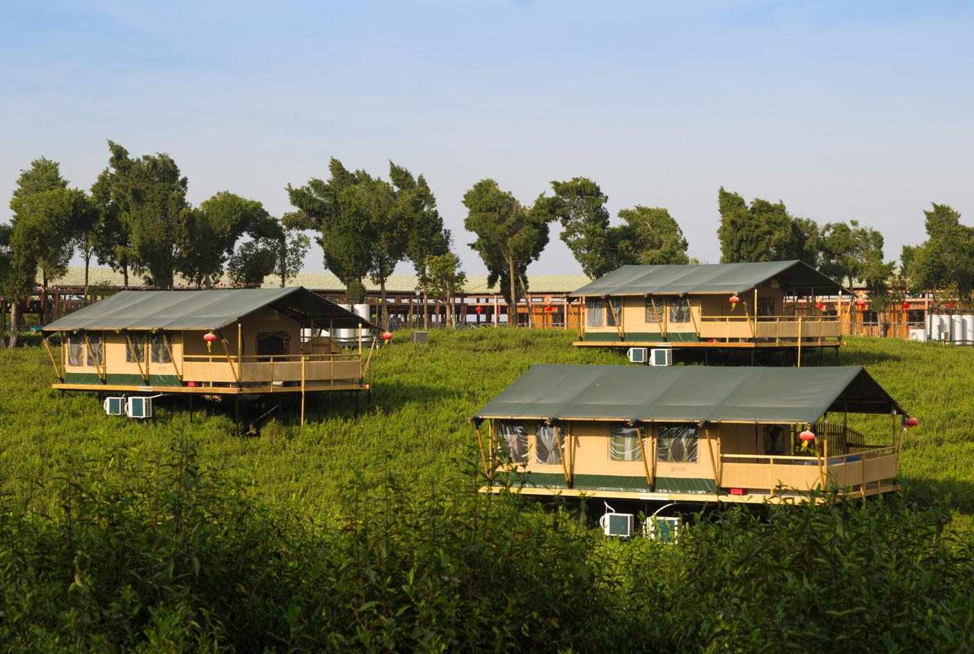 喜马拉雅野奢帐篷酒店—江苏常州茅山宝盛园2期茶田帐篷酒店4