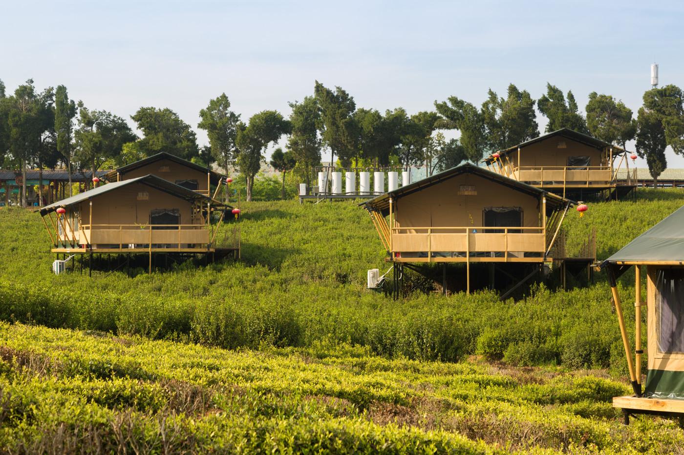 喜马拉雅野奢帐篷酒店—江苏常州茅山宝盛园2期茶田帐篷酒店3